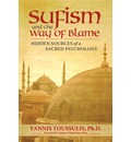 Sufism and the Way of Blame - Yannis Toussulis