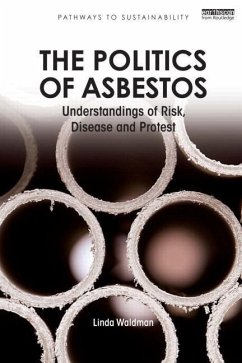 The Politics of Asbestos: Understandings of Risk, Disease and Protest - Waldman, Linda