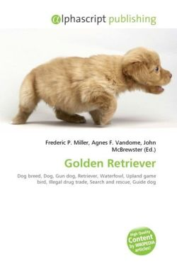 Golden Retriever: Dog breed, Dog, Gun dog, Retriever, Waterfowl, Upland game bird, Illegal drug trade, Search and rescue, Guide dog