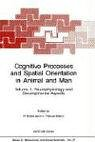 Cognitive Processes and Spatial Orientation in Animal and Man: Volume II Neurophysiology and Developmental Aspects - Ellen, Paul / Ellen, P. / Thinus-Blanc, C.