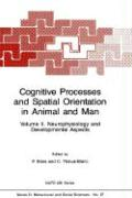 Cognitive Processes and Spatial Orientation in Animal and Man: Volume II Neurophysiology and Developmental Aspects (Nato Science Series D: (37), Band 37)