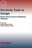 Electricity Trade in Europe: Review of the Economic and Regulatory Changes (International Energy and Resources Law and Policy)