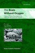 The Brain Without Oxygen